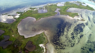 Aerial footage of Goodwin Island seagrass bed, York River Estuary, VA